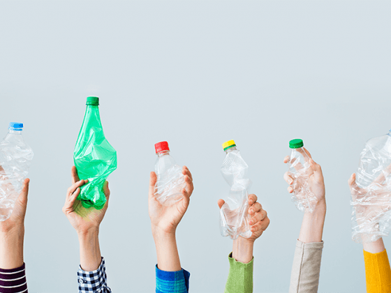 сколько разлагается пластик