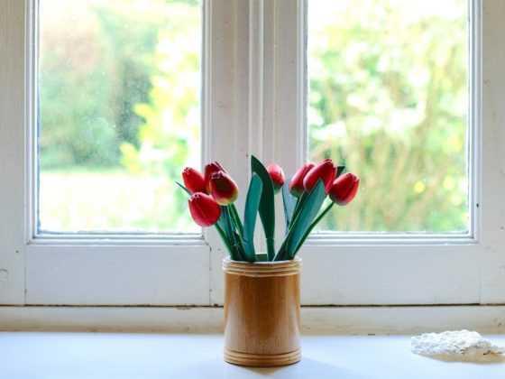 Пластиковые окна вред и польза