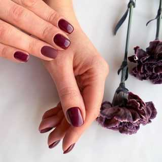 bordo-nails_119_fon